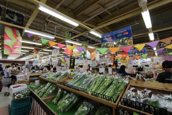 http://www.odnsym.com/images/toyosaki02.jpg
